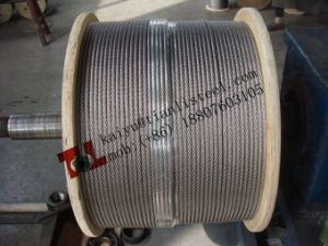 Ss316 7*7 Stainless Wire Rope pictures & photos