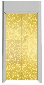 Luxury Passenger Elevator with Golden Etching Decoration pictures & photos