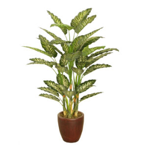 Artificial Plants of 120cm Dieffenbachia with Plastic Pot, 6 Sterms, 39 Las with Natural Looking