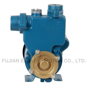 Self-Sucking Peripheral Water Pump with Ce Approved (PS126) pictures & photos
