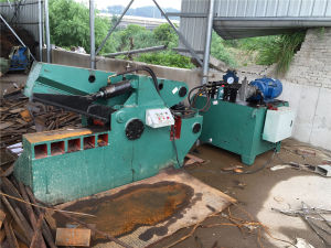 Q43-4000 Hydraulic Scrap Metal Shear pictures & photos