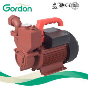 Domestic Electric 100% Copper Wire Self-Priming Booster Pump with Sensor pictures & photos