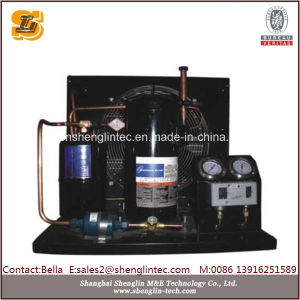 Hot Selling Condensing Unit for Freezer pictures & photos