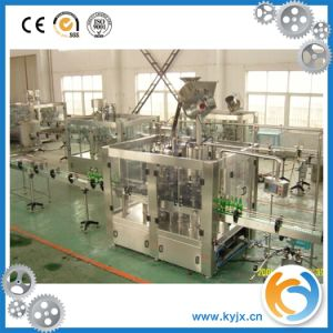 Automatic Beer Bottle Filling Plant /Line Bottling Machine pictures & photos