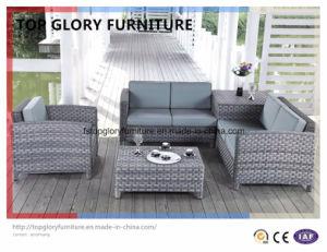 Garden Patio Outdoor PE Rattan Sofa Sets (TG-055) pictures & photos