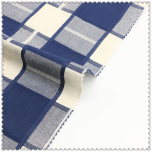 100% Cotton Fabric of Woven Checks for Women′s Tops pictures & photos