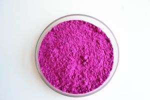 Pitaya Fruit Juice Powder for Beverage and Food Flavor pictures & photos