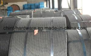 Galvanized Steel Strand/Galvanized Steel Wire/Iron Wire pictures & photos