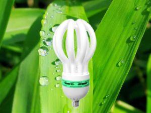 125W 150W Lotus 3000h/6000h/8000h 2700k-7500k E27/B22 220-240V CFL Down Price pictures & photos