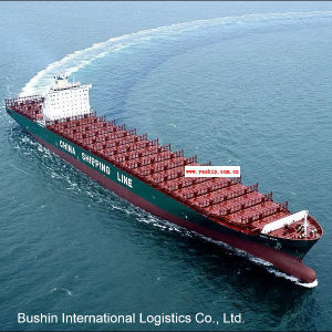 Professional Sea Shipping Logistics Agent From China to Santos/San Vicente/Sepetiba/Sepetiba/Suape/Ushuaia pictures & photos