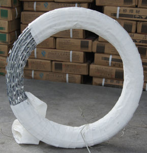 Galvanized Razor Barbed Wire in Guangzhou Supplier pictures & photos