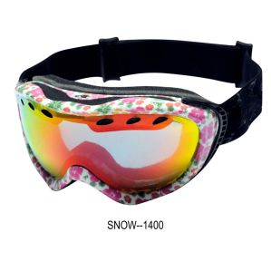 Protective Glasses (SNOW-1400) pictures & photos