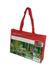 Semit Sedex Piller 4 Factory Audit Laminated PP Woven Bag pictures & photos