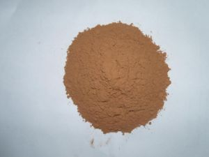 10-12% Fat Natural Cocoa Powder