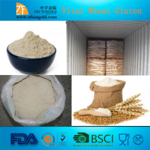 High Quality Food Grade Vital Wheat Gluten pictures & photos