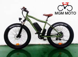 500W Retro Becah Crusier Harley Mountain Fat Electric Bike pictures & photos