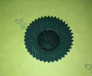 Mini Cup Flap Disc pictures & photos