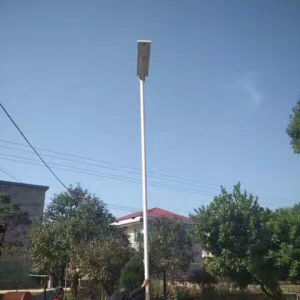 Bluesmart 100W/120W All in One Solar Panel LED Street Lighting Garden Lamp pictures & photos