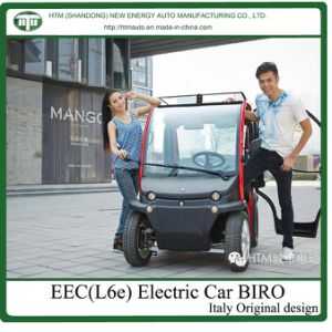 EEC Electrical Car with Hub Motor (biro)