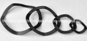 by Washer / Wave Spring Washer pictures & photos