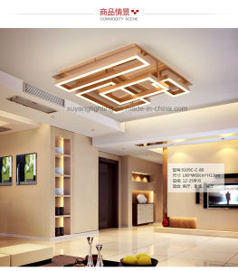 LED Indoor Ceiling Lamp for Decoration, Decorative Ceiling Light for House pictures & photos