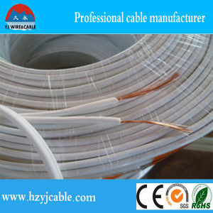 Spt-1 Spt-2 Spt-3 Spt Wire Electrical Wiring Cables pictures & photos