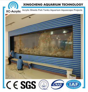 Aquarium Glass Walls pictures & photos