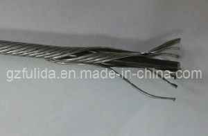 Inner Wire for Auto Control Cable (FULIDA-INNER(1+12)) pictures & photos