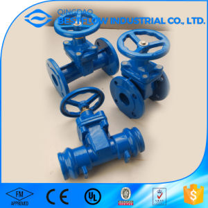 Cast Iron Double Disc Motorized Gate Valve pictures & photos