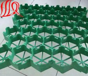 Plastic Grid for Gravel pictures & photos