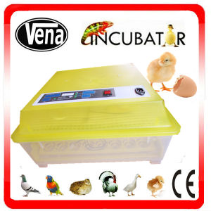 2014 Promotion Micro-Computer Automatic Incubator Neonate pictures & photos