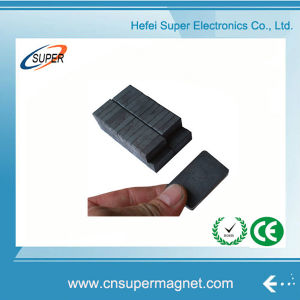 ISO9001 Certificated Y10t Isotropic Ferrite Magnet pictures & photos