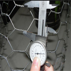 ISO High Quality Hot Dipped Galvanized Hexagonal Wire Mesh pictures & photos