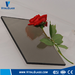 Dark Grey/Clear/Tinted/Reflective/Tempered/Laminated Float Glass pictures & photos
