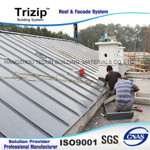 Professional Build Team, Stable Roof System pictures & photos