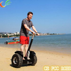 Two Wheels Mobility Scooter Manufacturer for Electric Scooter pictures & photos
