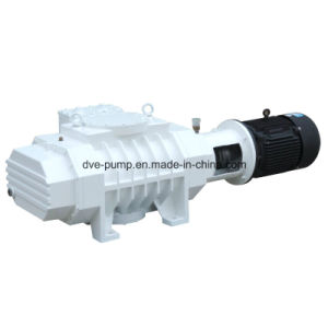 Industrial Roots Vacuum Pump Used in Aerospace Simulation Experiments pictures & photos