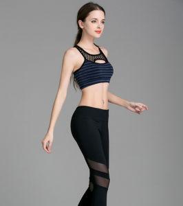 OEM Factory Nylon Spandex Dry Fit Mesh Cheap Yoga Pants pictures & photos