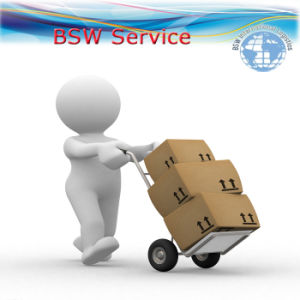 Logistics Service Express Delivery Shipping South Africa Truck pictures & photos