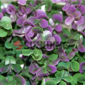 Garden Decorative Plastic Artificial Grass Leaf Fence pictures & photos