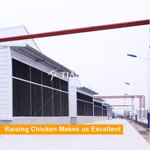 Chicken Farm Environment Control System Poultry Water Cooling Pad pictures & photos