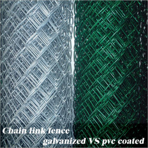 Vinyl Coated Chain Link Fence pictures & photos