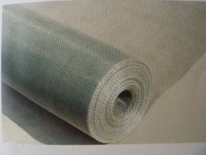 Galvanized Gauze Wire Mesh pictures & photos