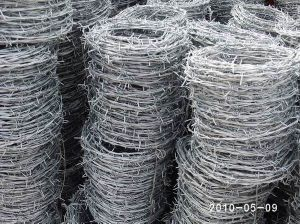 Hot DIP Galvanized Barbed Wire pictures & photos