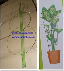 Bamboo Sticks for Flower