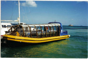Rib Boat (HA1200)