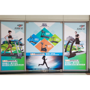 Paper Poster Printing/ Advertising Poster/Digital Poster (tx040) pictures & photos