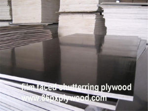 Hot Sale Black Face Film Plywood for Shuttering