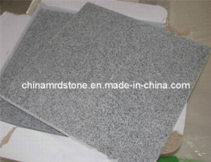 Natural Granite Stone Floor with Flamed Surface
