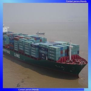 Ship From China to Zeebrugge, St Petersburg, Felixstowe pictures & photos